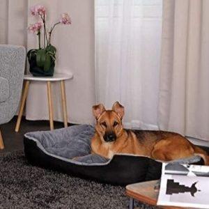 Cama para perro grande con cojín Dibea