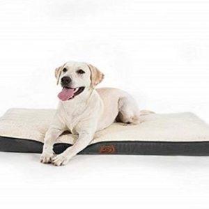 Cama para perro grande ortopédica Bedsure