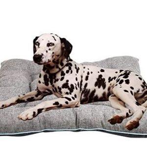 Colchoneta para perro grande Arcoiris