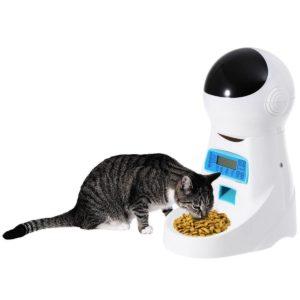 Comederos automáticos para gatos con grabador de voz