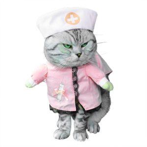Disfraces rosas para gatos