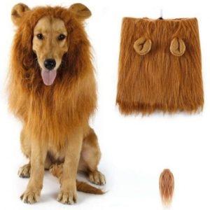 Disfraz para perro de león