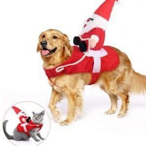 Disfraz para perro de Papá Noel