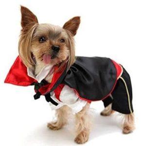 Disfraz para perro de vampiro
