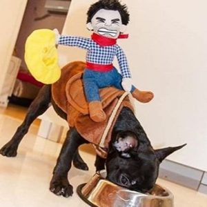 Disfraz para perro de vaquero