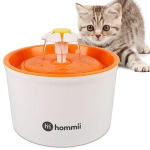 Fuentes para gatos con filtro