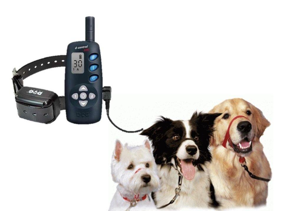 Collares antipulgas para perros baratos collares for Collares para perros