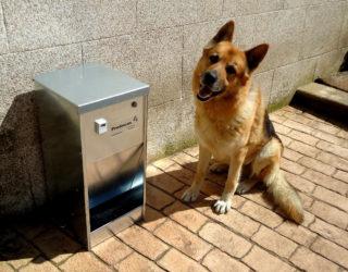 Comederos para perros automáticos
