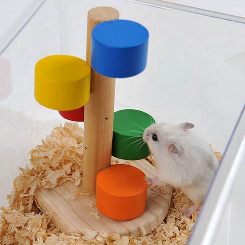 Resultado de imagen para Juguetes para hamsters que debes tener