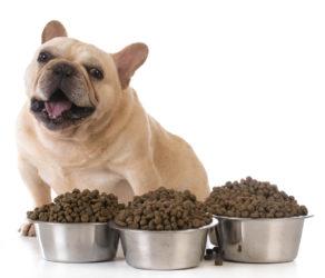 piensos para perros esterilizados