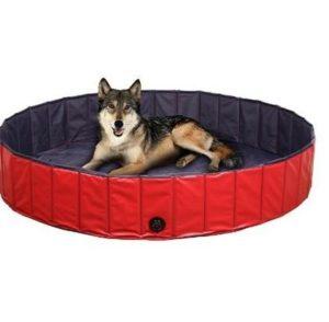 Piscina para perros Femor con desagüe