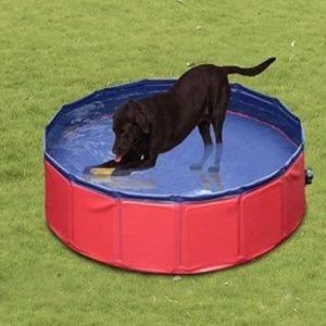 Piscina para perros plegable PawHut